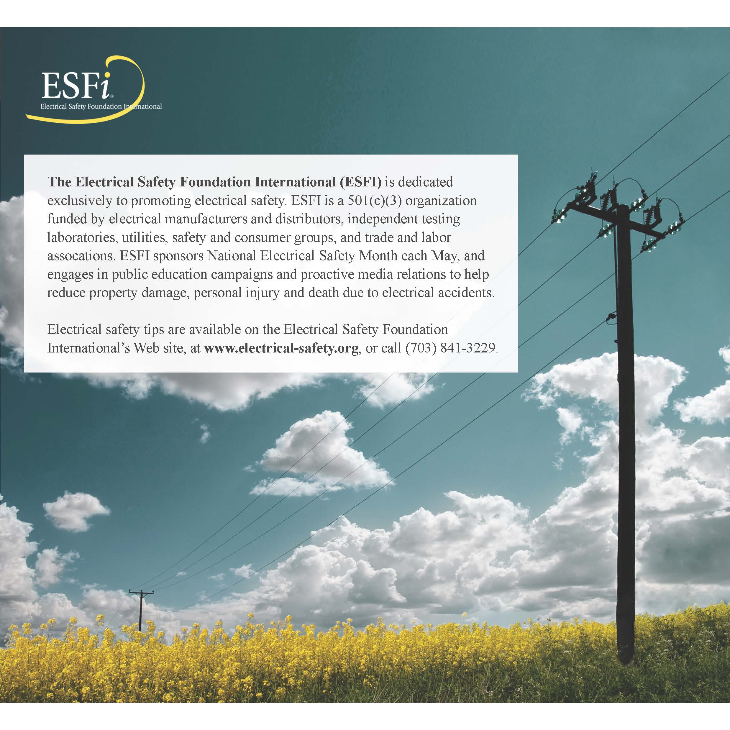 Esfi Know The Dangers In Your Older Home Power And